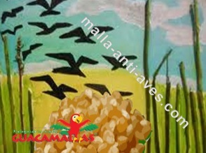 Las avs son uno de los principales motivos de las bajas de producción agrícola